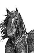 Wild Pony Drawings Prints - Thunder Cloud Print by J M L Patty