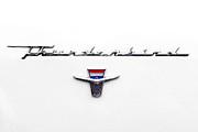 Thunderbird Tag Print by Jerry Fornarotto