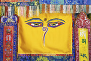 Religious Symbol Framed Prints - Tibetan Eyes Framed Print by Tim Gainey