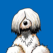 Kim Niles - Tibetan Terrier Toon