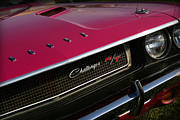 Mopar Metal Prints - Tickled Pink 1970 Dodge Challenger R/T Metal Print by Gordon Dean II