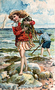 Little Boy Prints - Tide Pools AT The Beach Print by Unknown