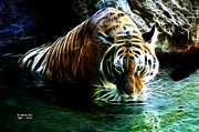 Tiger Fractal Framed Prints - Tiger 3838 - F Framed Print by James Ahn