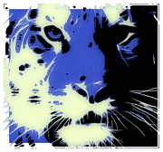 Tilly Art Posters - Tiger Blue Poster by Tilly Williams