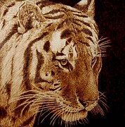 Monochrome Pyrography Prints - Tiger Print by Cara Jordan