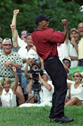 Tiger Woods Photos - Tiger by David Yunker