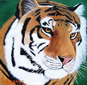 Bengal Painting Framed Prints - Tiger Framed Print by Debbie LaFrance