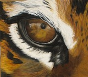 Animal Portraits Pastels Prints - Tiger Eye Print by Ann Marie Chaffin