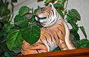Signed By Artist Photos - Tiger Hiding In Greenery by Jay Milo