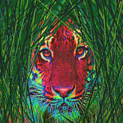 Tiger Digital Art Prints - Tiger In The Grass Print by Jane Schnetlage