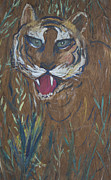 Wildife Painting Framed Prints - Tiger in Wood Framed Print by Avonelle Kelsey