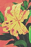 Sophiaart Gallery Framed Prints - Tiger Lily Framed Print by SophiaArt Gallery