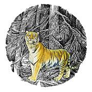 Tiger Print by Natalie Berman