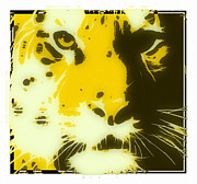 Tilly Art Posters - tiger Oranage Poster by Tilly Williams