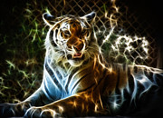Tiger Fractal Photos - Tiger by Richard Herman