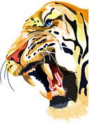Sassan Filsoof - tiger roar