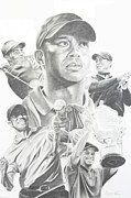 Tiger Woods Drawings - Tiger by Stephen Rea