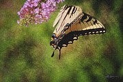 Photo Manipulation Photo Posters - Tiger Swallowtail Poster by EricaMaxine  Price