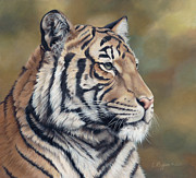 Bengal Painting Posters - Tiger Tiger Poster by Laura Regan