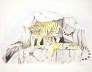The Tiger Drawings - Tiger Twins by Dag Sla