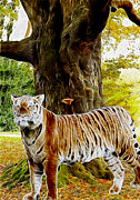 Digital Manipulation Paintings - Tiger under Decidous Bark Tree  by Georgeta Blanaru