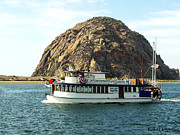 Brunch Prints - Tigers Folly Morro Bay Print by Barbara Snyder