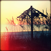 Florida Flowers Prints - Tiki at Sunset Print by Chris Andruskiewicz