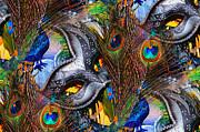 Cindy Nunn - Tiled Peacock