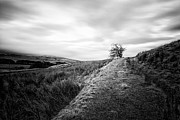 Lone Tree Photo Prints - Till the world stops turning Print by John Farnan