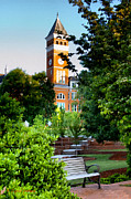 Clemson Art - Tillman Hall Early Morning by Lynne Jenkins