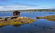 Nina Stavlund - Tilting Harbour..