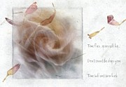 Rose Petals Digital Art Prints - Time flies Print by Gun Legler