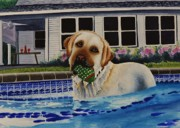 Dog Swimming Paintings - Time For A Break by Joy Bradley                   DiNardo Designs