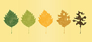 Tree Leaf Digital Art Posters - Time passes Poster by Budi Satria Kwan
