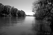 Florida Rivers Photo Prints - Time Stands Still Print by Debra Forand