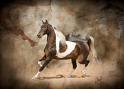 Saddlebred Posters - Time To Show Off Poster by Diana Allison