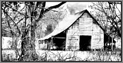 Wooden Building Digital Art Prints - Timeless in Black and White Print by Betty LaRue