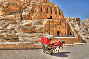 David Birchall - Timeless in Petra