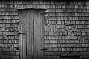 Wood Shingles Posters - Timeless Poster by Matt Dobson