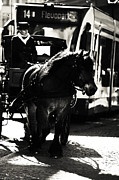 Horse And Wagon Photos - Timeless Transportation. Trash Sketches from the Amsterdam Streets by Jenny Rainbow