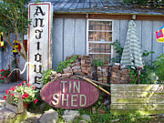 Shed Pyrography - Tin Shed Apalachicola Florida by Audrey Peaty