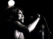 Tina Turner Prints - Tina Turner - Growling Print by Robert  Rodvik