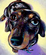 Dachshund Art Paintings - Tink  by Robert Phelps