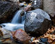 Terry Garvin - Tiny Waterfall in Yosemite