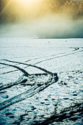 Silvia Ganora - Tire signs in snow
