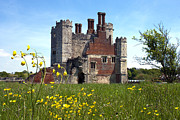 Chimneys Prints - Titchfield Abbey Buttercups Print by Terri  Waters