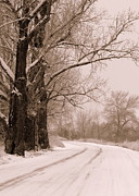 Winter Roads Framed Prints - To Grandmas House Framed Print by Carol Groenen