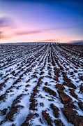 Snow Photo Prints - To infinity Print by John Farnan