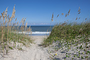 Blue Green Wave Photos - To The Beach by Kay Pickens