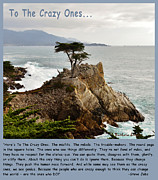 Morro Bay Posters - To The Crazy Ones Poster by Barbara Snyder